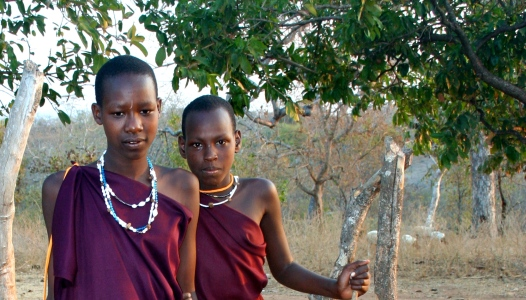 Young Maasai women.  They were shy, but still allowed me to take their picture.