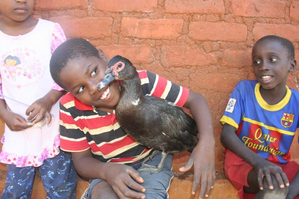 Dani and Duck